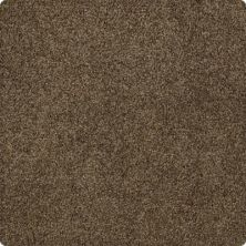 Karastan Elegantly Soft Due West Brown 43599-9879