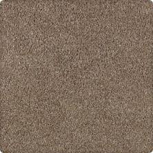 Karastan Modern Vision Nutmeg 43606-9845