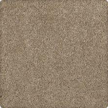 Karastan Modern Vision Allspice 43606-9848