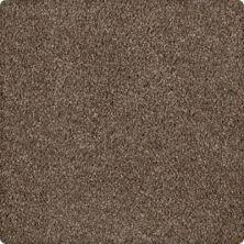 Karastan Modern Vision Pine Cone 43606-9868