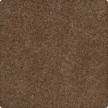 Karastan Redford Heights Raw Sienna 2J38-9898