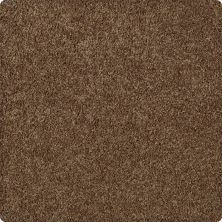 Karastan Enhanced Beauty Canvas Rust 43603-9898