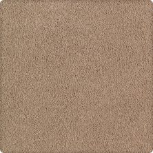 Karastan Lavish Affair Whole Grain 2M05-9768