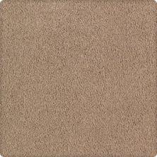 Karastan Lavish Affair Whole Grain 2M05-9768
