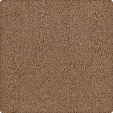 Karastan Lavish Affair Nutmeg 2M05-9851