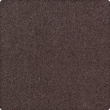 Karastan Lavish Affair Antigua Brown 2M05-9879