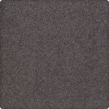 Karastan Luxurious Beauty Manhattan Grey 43629-9979