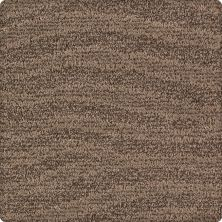 Karastan Natural Influence Dried Peat 2M63-9799