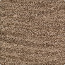 Karastan Native Splendor Weathered Timber 43631-9875