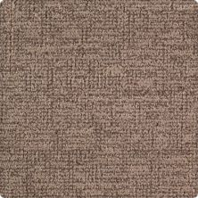 Karastan Heightened Glamour Dark Taupe 2M16-9799