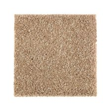 Mohawk Stonington Manor I Brushed Suede 2N99-511