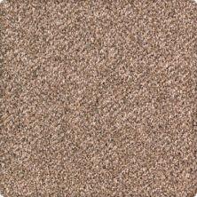 Karastan Rustic Revival Allspice 43632-9771