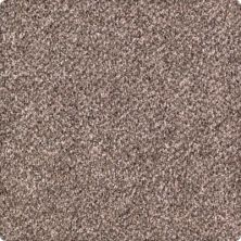 Karastan Rustic Revival Mineral Brown 43632-9789