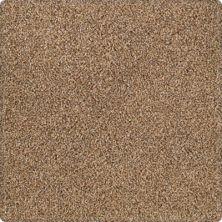 Karastan Tranquil Shades Cattail 43636-9787