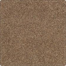 Karastan Tranquil Shades Saddle 43636-9855