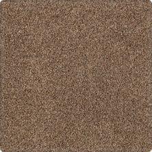 Karastan Tranquil Shades Sequoia 43636-9875