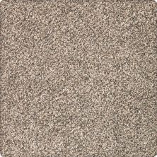 Karastan Desired Elegance Coastal Beige 43640-9741