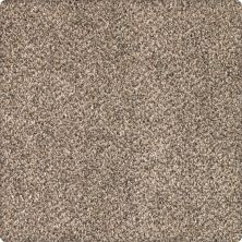 Karastan Desired Elegance Whole Grain 43640-9767