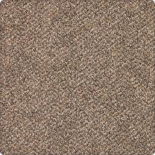 Karastan Desired Elegance Allspice 43640-9771