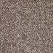 Karastan Desired Elegance Mineral Brown 43640-9789