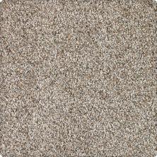 Karastan Refined Essence Folkstone 43639-9915