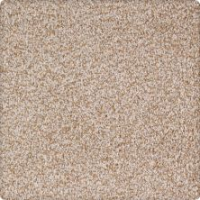 Karastan Peaceful Quality Sandstone 43650-9741