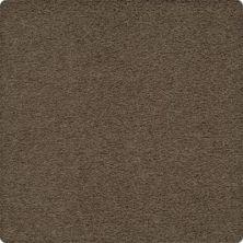 Karastan Artisan Delight Tapestry 43656-9850