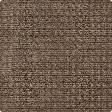 Karastan Strength Cedar 2U82-9875