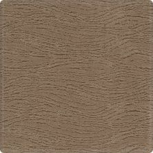 Karastan Modern Nature Native Soil 2W80-9832