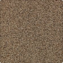 Karastan Instinctive Flair Cape Sands 43651-9767