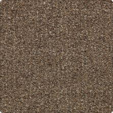 Karastan Instinctive Flair Aged Walnut 43651-9789