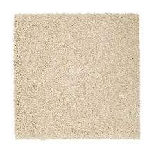 Mohawk Pleasant Touch Frosted Almond 2X91-519