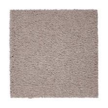 Mohawk Pleasant Touch Perfect Taupe 2X91-506