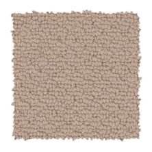 Mohawk Knotted Elements Canyon Shade 3A37-515