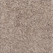 Karastan Inherent Style Prairie Dusk 2Z27-9848