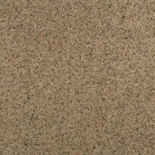 Karastan Striking Splendor Canvas 2Z45-9781