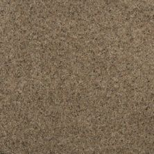 Karastan Striking Splendor Rich Earth 2Z45-9848
