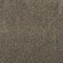 Karastan Striking Splendor Granite 2Z45-9984