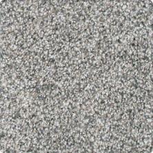 Karastan Fascinating Allure Flannel 3B69-9948