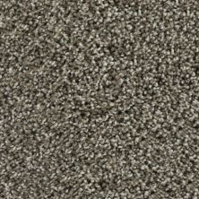 Karastan Noteworthy Style Taupe Shadow 43687-9869
