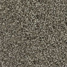 Karastan Noteworthy Style Taupe Shadow 43687-9869