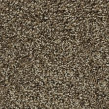 Karastan Noteworthy Style Mesquite Chip 43687-9876