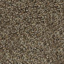 Karastan Noteworthy Style Mesquite Chip 43687-9876