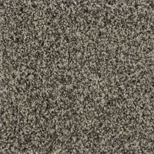 Karastan Luxurious Tones Pebble 3D77-9729
