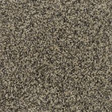 Karastan Polished Details Wheat 43691-9738