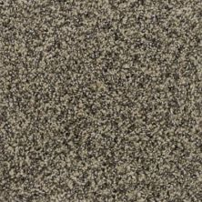 Karastan Polished Details Wheat 43691-9738