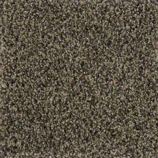 Karastan Polished Details Montebello 43691-9825