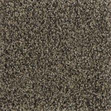Karastan Polished Details Talon 43691-9829