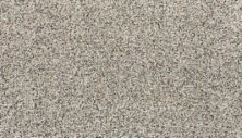 Karastan Sophisticated Nature Colonial Ash 43703-9700
