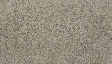 Karastan Sophisticated Nature Toasted Almond 43703-9712
